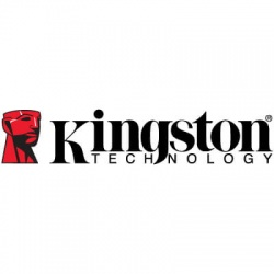 kingston-vector_1